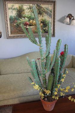 Fake cactus plant in pot for Sale in San Manuel,  AZ