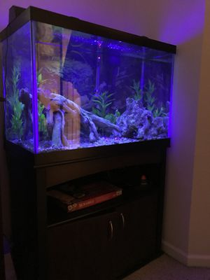 65 GALLON TANK for Sale in Washington, DC