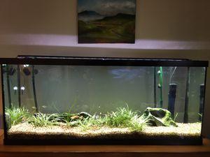 Fish tank for Sale in Tualatin, OR