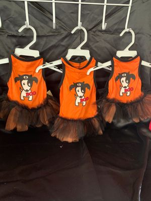 Boo Tulle Halloween Dog Dress for Sale in Oxnard, CA