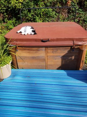 Free Hot Tub and Cover for Sale in Seattle, WA