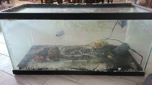 30 or 35 gal Fish tank for Sale in Riverside, CA