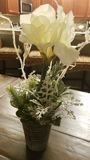 Winter plant decor for Sale in Chesapeake, VA
