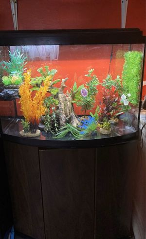 Crested gecko enclosure for Sale in Redondo Beach, CA