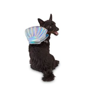Dog or cat seashell backpack, pet accessories, pet fashion, small dog, small cat, cat accessories, dog accessories for Sale in Raytown, MO