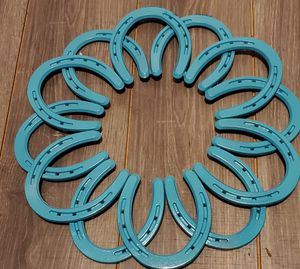 Horseshoe art for Sale in Blue Springs, MO