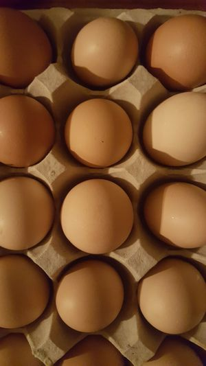 Farm fresh GMO free cage free eggs, from orphington and laced wyndottes for Sale in Wichita, KS