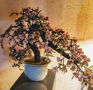 Glass bonsai for Sale in Tacoma, WA