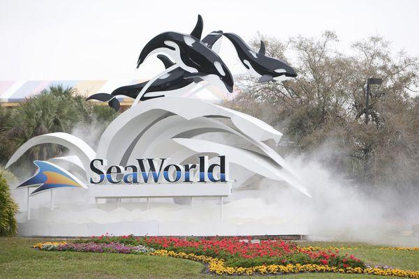 Seaworld Orlando Tickets