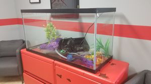 90 gallon aquarium with decorations, filter and light for Sale in Pinellas Park, FL
