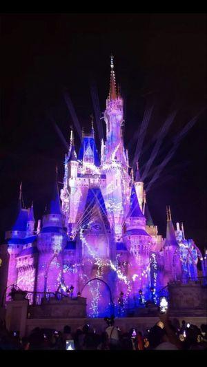 Walt Disney 1 Day 1 Park for Sale in Orlando, FL