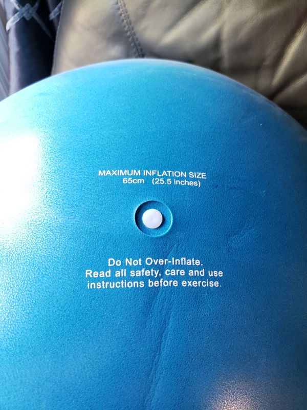 Life Fitness Ball and Mat with pump