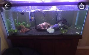 60 gallon fish tank with all equipment and accessories shown In picture with stand NO FISH INCLUDED for Sale in Humble, TX