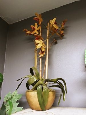 Rustic Decor Plant Its fake!! for Sale in Joliet, IL
