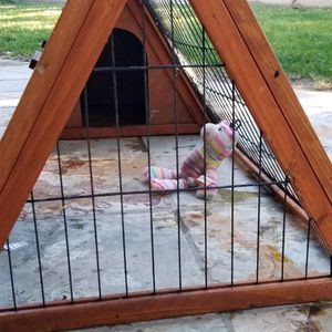 Triangular Cage For Small Pets for Sale in Cypress, CA