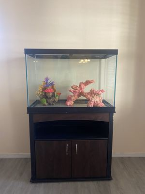 65 Gal Fish Tank w/ decor for Sale in Wildomar, CA