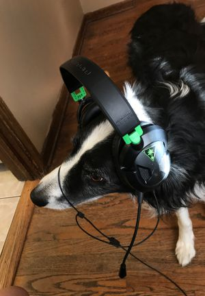 Turtle beach headset compatible with any system for Sale in Elmhurst, IL