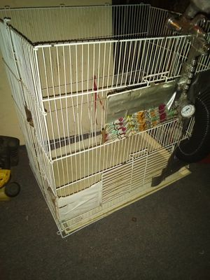 Small bird cage for Sale in Columbus, OH