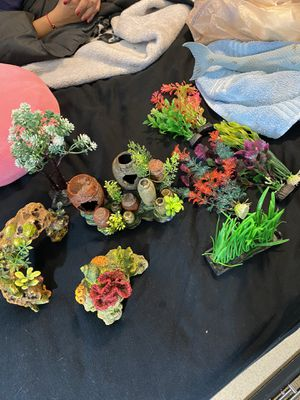 Fish Tank Decorations for Sale in Moreno Valley, CA