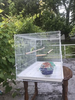 2 birds with their cage for Sale in Monroeville, PA