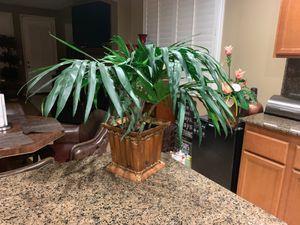 Home decor palm tree Plant for Sale in Moreno Valley, CA