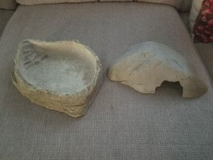 Reptile water bowl and cave for Sale in San Diego, CA