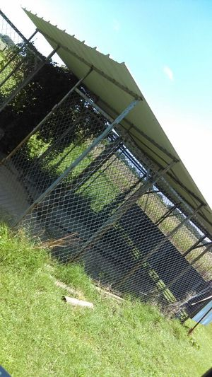 Dog kennel 3 in 1 for Sale in Dallas, TX