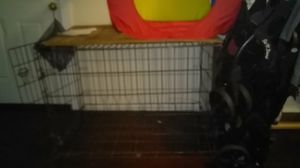 Dog crate $22 READ DESCRIP. for Sale in Columbus, OH