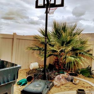 Basketball Hoop for Sale in Beaumont, CA