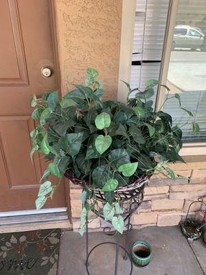 Fake plant for Sale in Phoenix, AZ