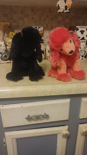 Retired 2003 Ty 13 in poodles plushies for Sale in Cleveland, OH