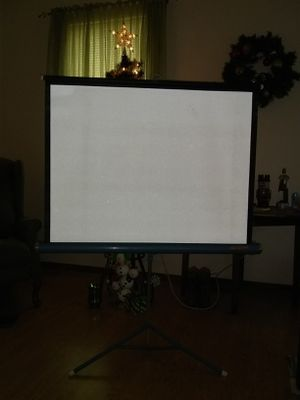 DeLite Vintage Projector Screen for Sale in Carthage, MO