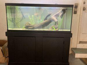 75 gallon aquarium for Sale in Dallas, GA