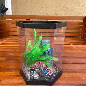 Fish Tank With Accessories And Filter for Sale in Sacramento, CA