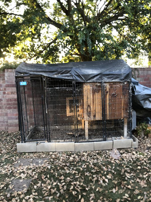 Dog kennel with chicken coup 8x4 ft