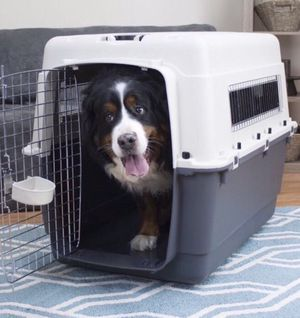 """XX-Large Dog cage kennel 39x26x30"""" for Sale in Queens, NY"""