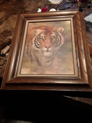 Picture Tiger for Sale in San Lorenzo, CA