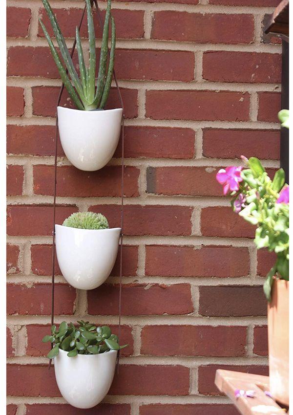Hanging planter succulent cactus flower pots
