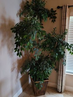 Artificial Indoor Tree for Sale in Lehigh Acres,  FL