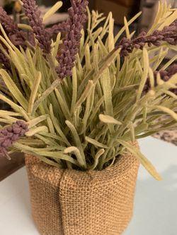 Lavender Flower Pot Decor for Sale in Boynton Beach,  FL