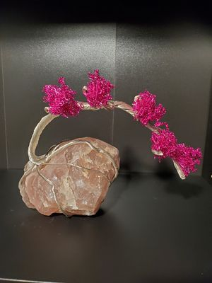 Handmade Wire Bansia Tree for Sale in Portland, OR