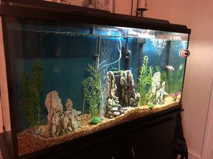 65 gallon fish tank for Sale in North Smithfield, RI