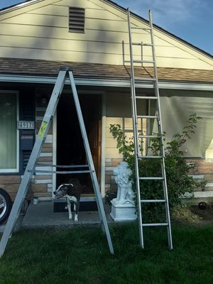 Ladders for sale 50 bucks for both firm for Sale in Tacoma, WA