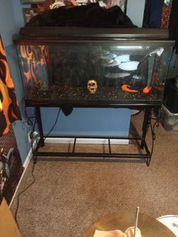 55gallon Fish Tank Everything In Clvded for Sale in Lorain,  OH