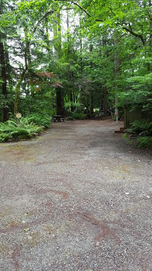 Rv site with shed and picnic table for Sale in Gold Bar, WA
