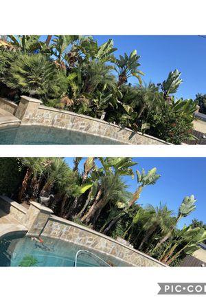 Garden, Landscape, Irrigation Work for Sale in Corona, CA