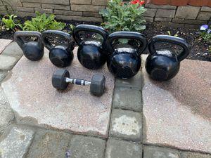 Professional Rogue Kettebell 1 set 50LB ,jus one 55 LB jus one 25LB jus one 15, dumbbells 10 ,Accept good offers for Sale in Alexandria, VA