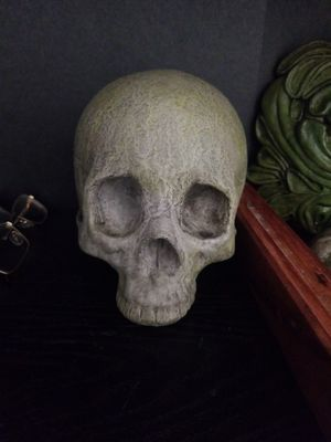 Carved skull for Sale in Carrboro, NC