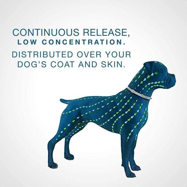 Seresto 8 Month Flea & Tick Prevention Collar for Small Dogs