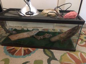 Reptile setup for Sale in Azusa, CA